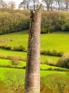 Springwalk around Calstock/8 | by Joanpix