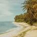 Kaalawai Beach c1972