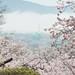 2012年4月29日 石巻市日和山公園
