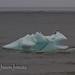 Iceberg_4151