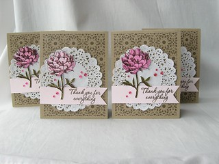 Thank You Tea Flower Cards | by AnitaRex