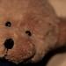 Taddybear