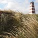 Denmark Thy National Park