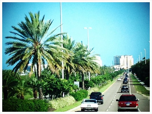 Clearwater Beach Bound | by cyndeehaydon