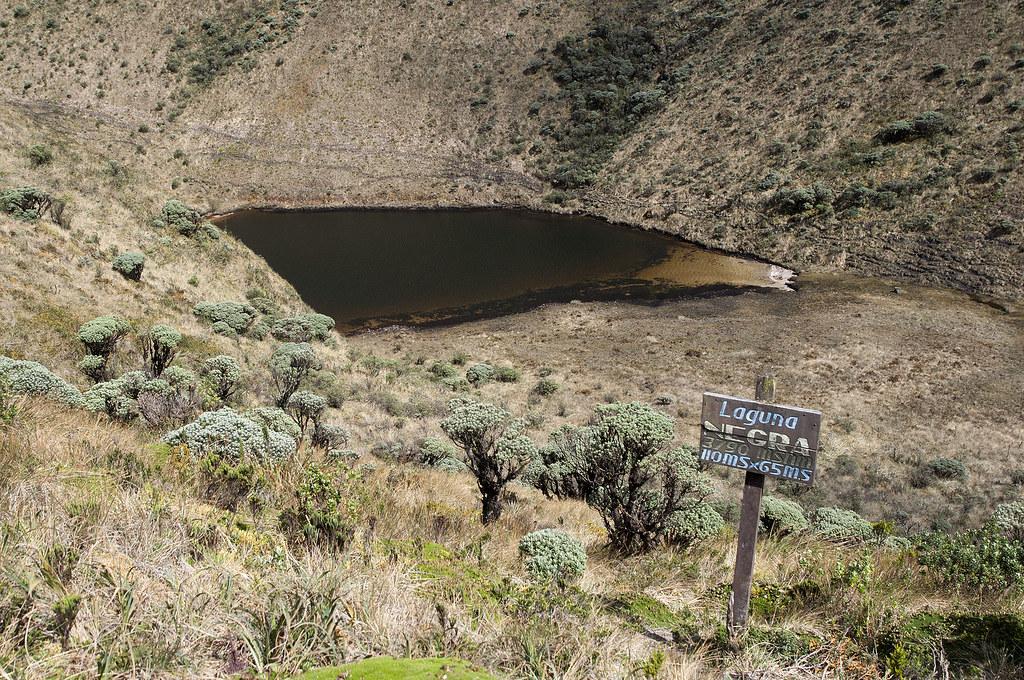 Prima della laguna verde c 39 un piccolo laghetto di acqua for Eliminare acqua verde laghetto