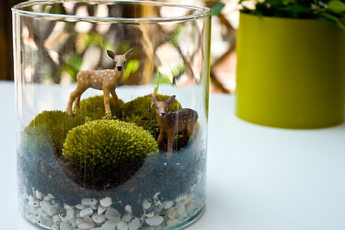 Moss and deers ♥ | by ::sämyii::