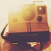 Polaroid in the Sun