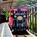 嵯峨野觀光小火車(嵯峨站)...Sagano Scenic Railway (Saga Torokko Station)
