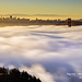 Fog City -- San Francisco