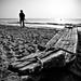 old men & the sea1