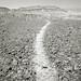 Badlands, Midday, Anza-Borrego Desert