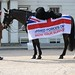 Household Cavalry Regiment Soldier and Horse with the Armed Forces Day Flag