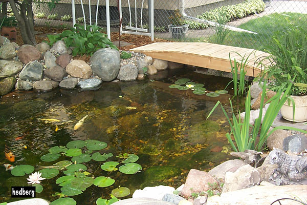 Backyard Fish Pond With Wooden Bridge Hedberg Supply
