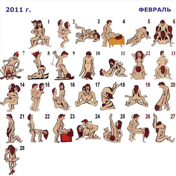 Calendar of sex positions