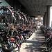 Cycle row