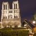 Notre Dame w Telescope