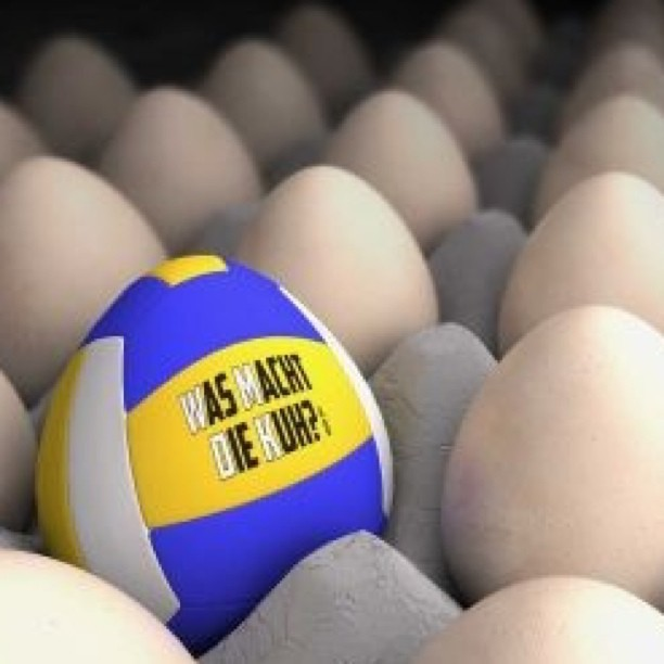 TV Bruchenbrücken / #volleyball #happy #Easter #visual. ma ... Happy Easter