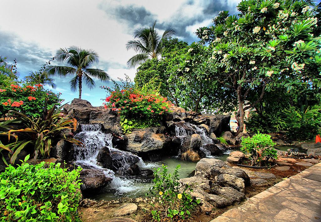 Hawaiian Garden As You Walk Along Waikiki Beach You Will Flickr