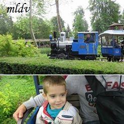 Le train nigloland