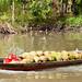 Mekong Delta 42