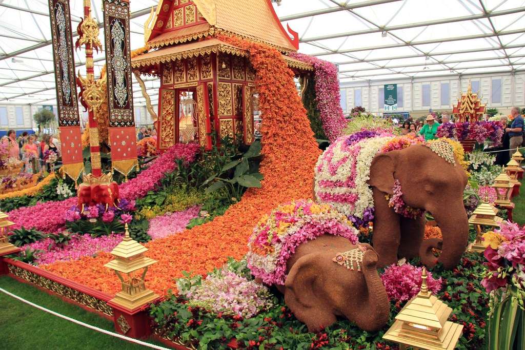 Rhs chelsea flower show 2012 nong nooch tropical botanical flickr - Royal flower show ...