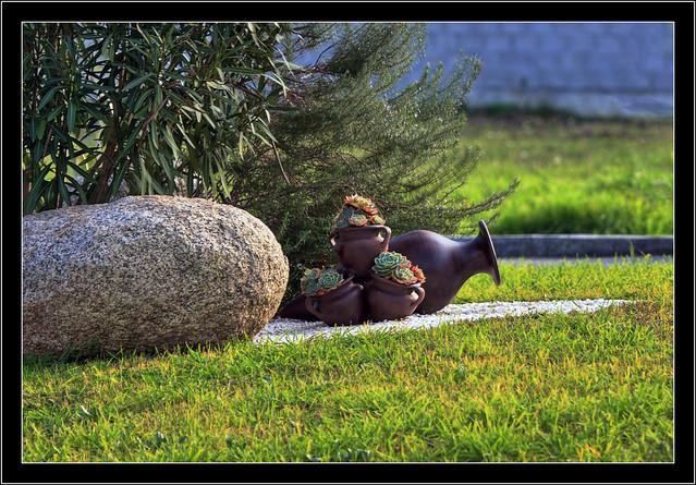 El jardin de la vecina flickr photo sharing for Jardines la cartuja el puig