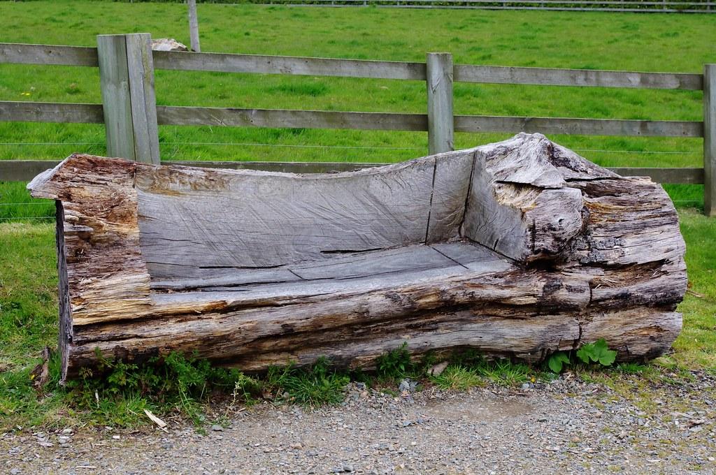 tree trunk bench jay flickr. Black Bedroom Furniture Sets. Home Design Ideas