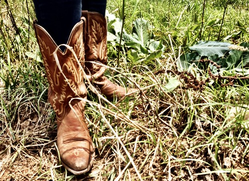 liz boots | by Urban Acres