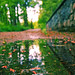 Pathway puddle