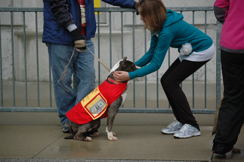 Humane Society Dog Walk