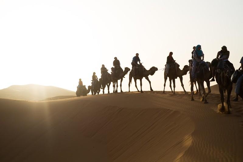 撒哈拉沙漠一景。