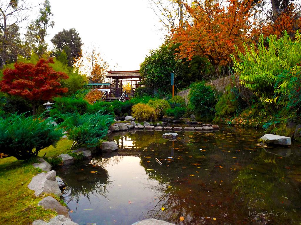 Jard n japones parque metropolitano de santiago javier for Jardin japones de santiago