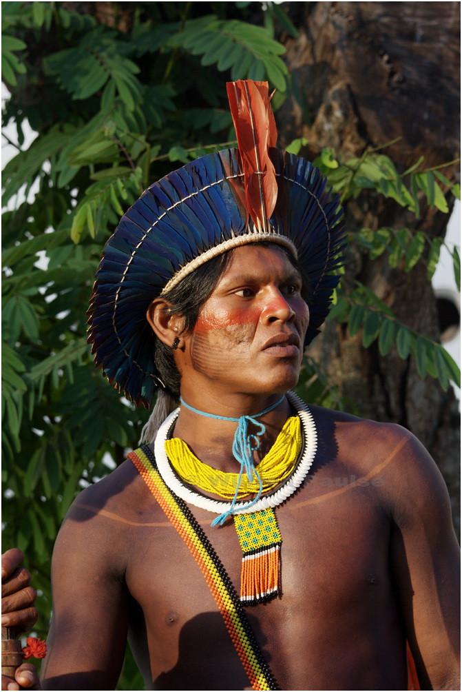 Fotos gratis de shemale indio