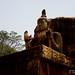 """IMG_0015_20120507 """"Staute of Lord Buddha - Aukana"""""""