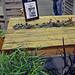San Francisco Garden Show Succulent Garden Pallet Table