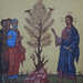 Fig Tree Icon