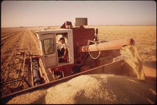 Harvesting barley grown in the Imperial Valley, May 1972 | by The U.S. National Archives