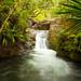 Kalalau Stream