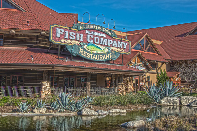 Islamorada fish company bass pro shops the rim san for Bass fishing in san antonio
