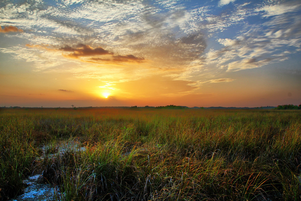 everglades sunrise taken at pa hay okee overlook chris foster flickr. Black Bedroom Furniture Sets. Home Design Ideas
