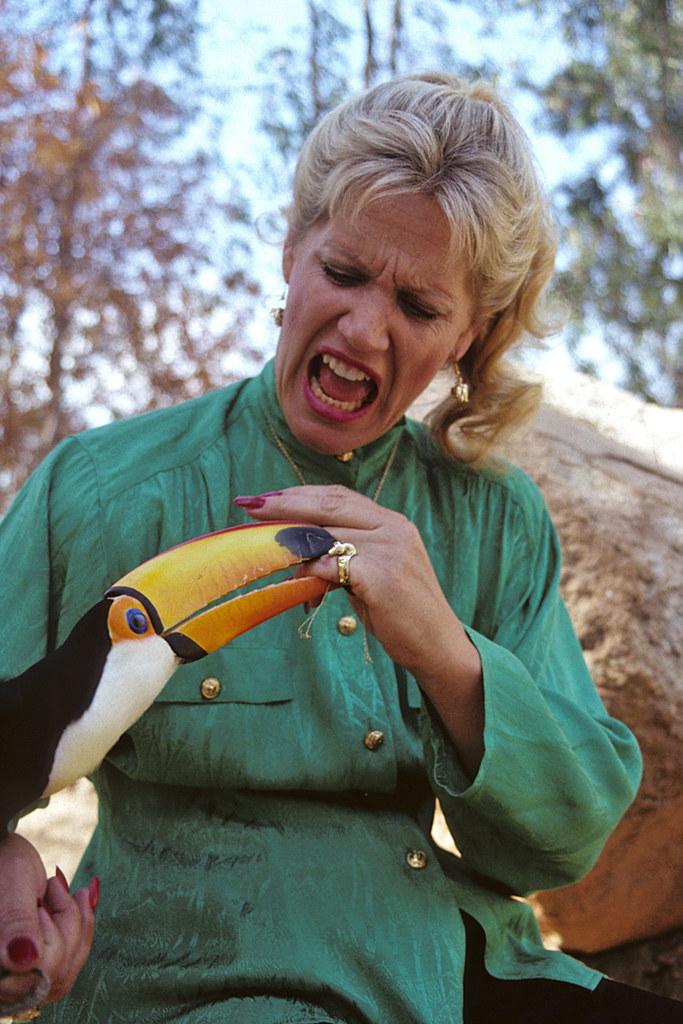 joan embery  u0026 toucan