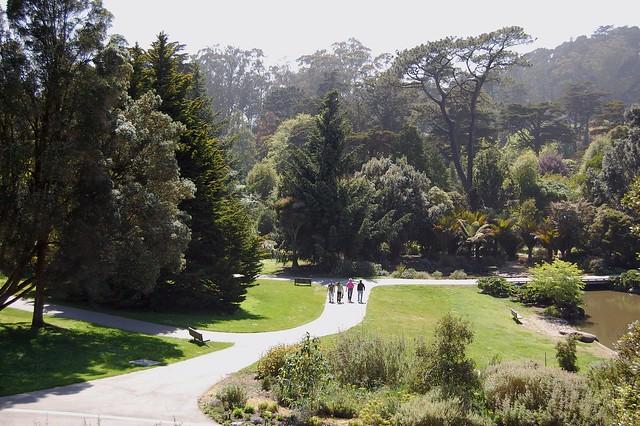San Francisco Botanical Garden Explore Clio1789 39 S Photos