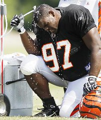 Geno Atkins' Story: A professional athlete living with sickle cell trait