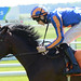 20.O'Brien powers to another Guineas win -Irish 2000 Guineas-