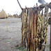 Displacement in South Sudan: food for today