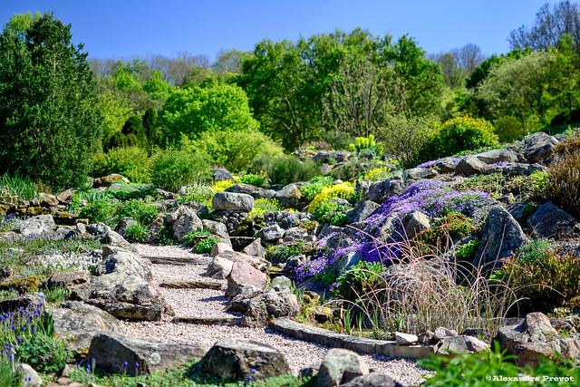 Jardin botanique du montet flickr photo sharing for Bd du jardin botanique 50