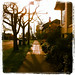 An evening stroll in the Ravenna neighborhood
