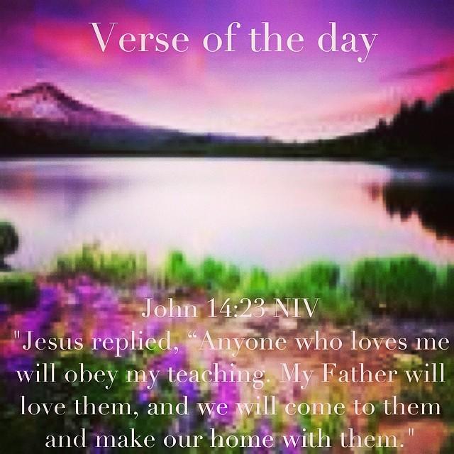 verse of the day john 14 23 niv jesus replied anyone flickr