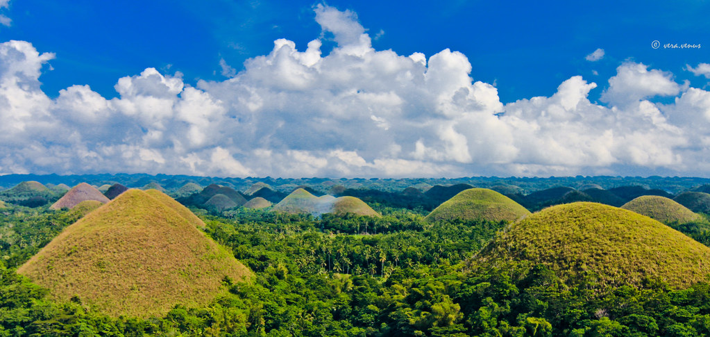 Chocolate Hills Bohol The Famous Chocolate Hills In