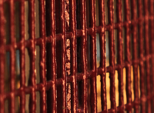 Red mesh (8) | by Wilamoyo